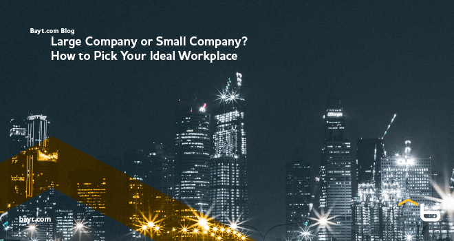 Large Company or Small Company? How to Pick Your Ideal Workplace